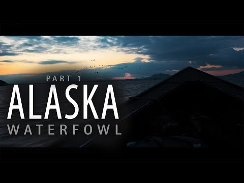 Alaska Adventure: Part 1 | Goose And Brant Hunting Over Windsock Decoys