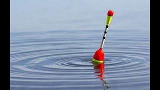 рыбалка на поплавок в конце сентября ловля плотвы рыбалка 2021