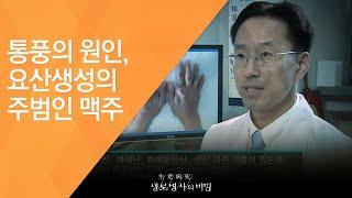 통풍의 원인, 요산생성의 주범인 맥주 - (2011.9…