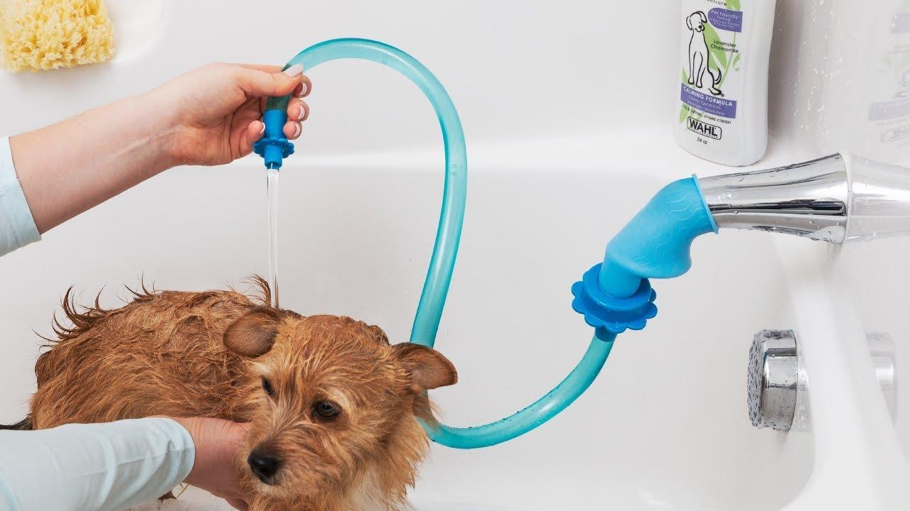 rinseroo slip on shower attachment hose