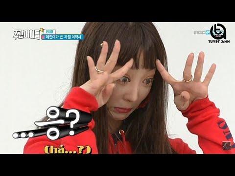 [VIETSUB] EXID Weekly Idol tập 351