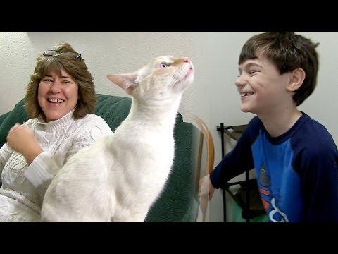 Homeschool Bible Insights!   CAF Family Vlog