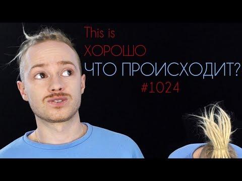 This Is Хорошо - Конец обзоров. Что происходит? #1024