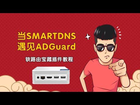 OPENWRT下让SMARTDNS与ADGuard Home珠联璧合