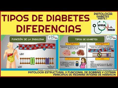 tipos-de-diabetes-y-sus-diferencias-|-guiamed