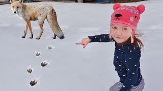 MYSTERY ANiMAL TRACKS!! Exploring our Cabin in Frozen Snow to find a Hidden FOX! Fun Family Vacation