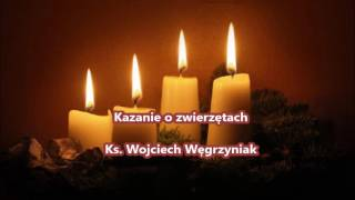 Kazanie o zwierzętach - Ks. Wojciech Węgrzyniak (audio)