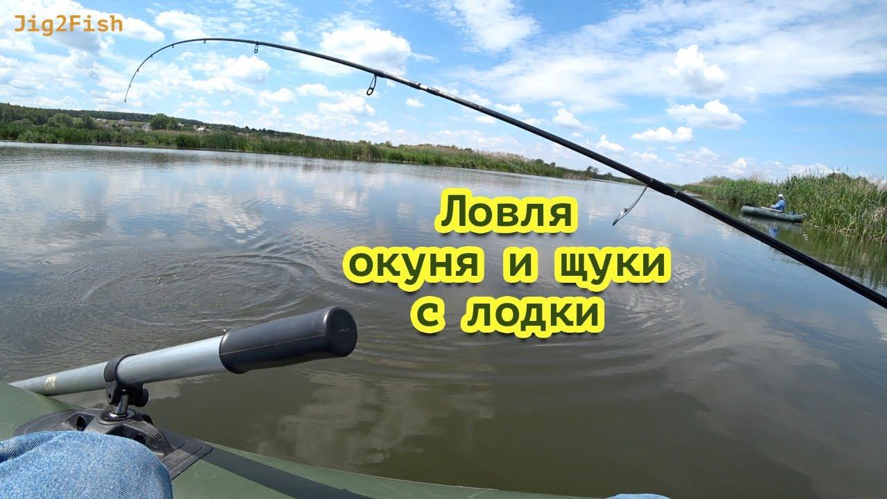 ловля окуня и судака с лодки
