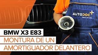 Reemplazar Caja Cojinete Rueda BMW X3: manual de taller