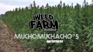 [MASTER TRACK *5] MUCHO MUCHACHO (Weed Farm Productions)