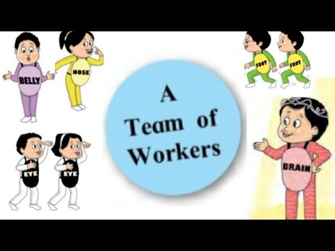 A team of workers standard 4   Easy Explaination