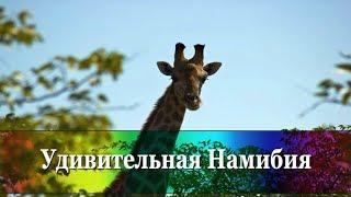 7 фактов о Намибии - в минутном ролике! Почему стоит ехать в Намибию?