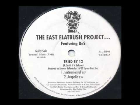 East Flatbush Project - Tried By 12 (Instrumental)
