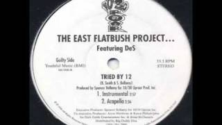 East Flatbush Project - Tried By 12 (Instrumental)