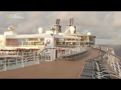 Mega Food - The World's Biggest Cruise Ship Full Documentary