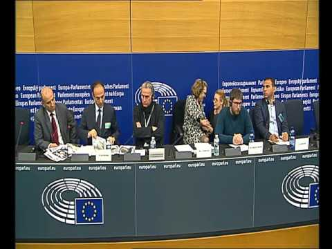 GUE/NGL MEPs report on the situation in South East Turkey,