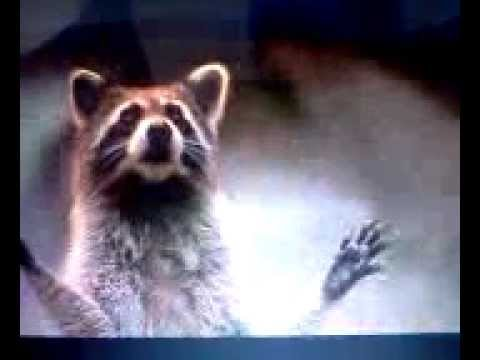 dr. dolittle 2 beaver - YouTube