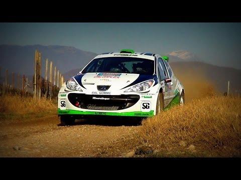 Christian Merli / Peugeot 207 S2000 / Prealpi Master Show 2013