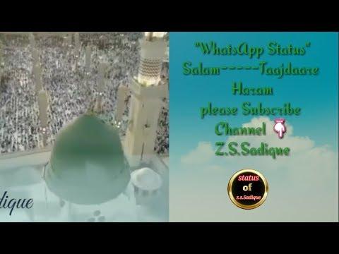 beautiful-salam-------------❤-taajdaare-haram-----------❤-whatsapp-status-------❤