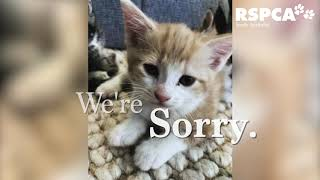 We're sorry these animals suffered | RSPCA South Australia