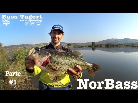 NorBass barragem de Vilarelhos parte #1