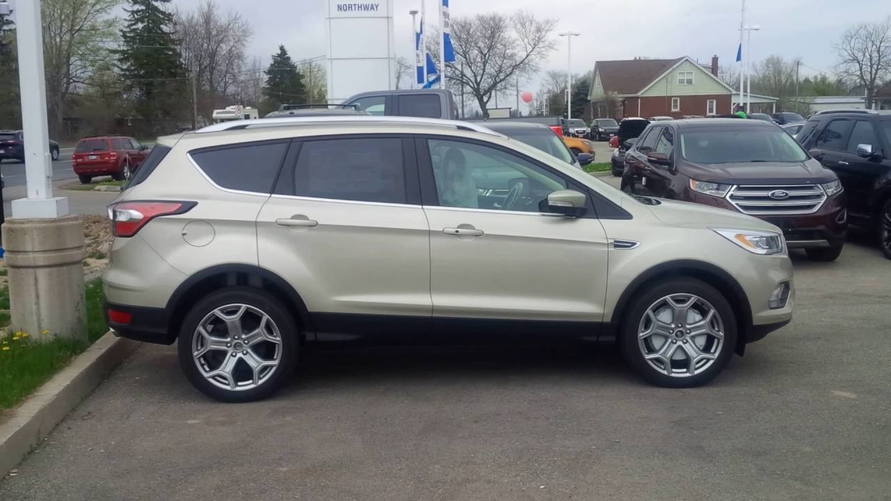 New Colour On 2020 Ford Escape Is White Gold...Take A Look - YouTube