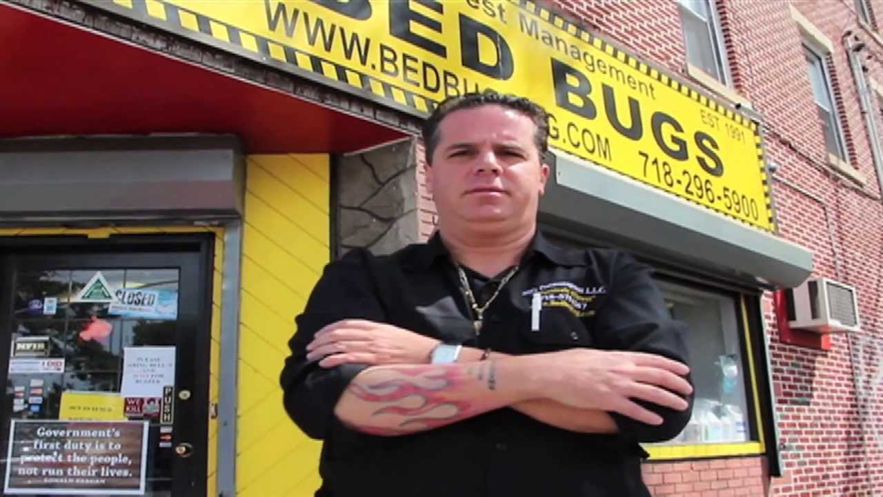 Bed Bugs King Of Queens