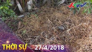 Mối nguy của những quả bom nổ chậm   THỜI SỰ HẬU GIANG - 27/4/2018