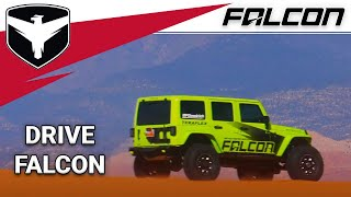 Falcon Shocks: Experience Adventure