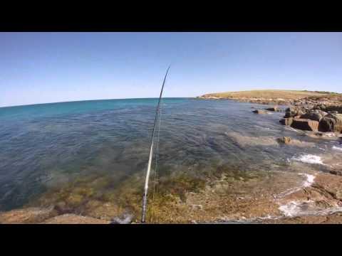 Rock Fishing South Australia For Australian Salmon