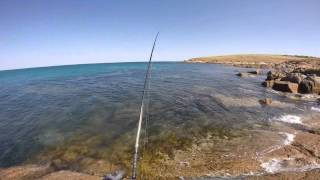 Rock Fishing South Australia For Australian Salmon(Facebook: https://www.facebook.com/auzzieFisha9/ Instagram: https://www.instagram.com/auzziefisha9/ A hectic days fishing with insane salmon fishing action., 2014-09-30T01:38:07.000Z)