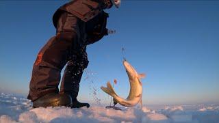 Кокаи рыбалка с каналом GGG KaiSer Ловили Щуку и не только