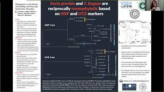 SBE meeting 2021's poster presentations: Adam et al.: RAD-Seq, SNPs, ultraconserved elements, coral