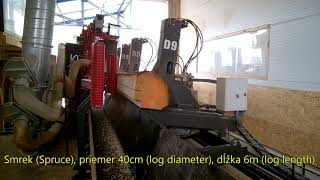 Видео работы автоматического лесопильного комплекса StojCAD D9 LH6 Standart