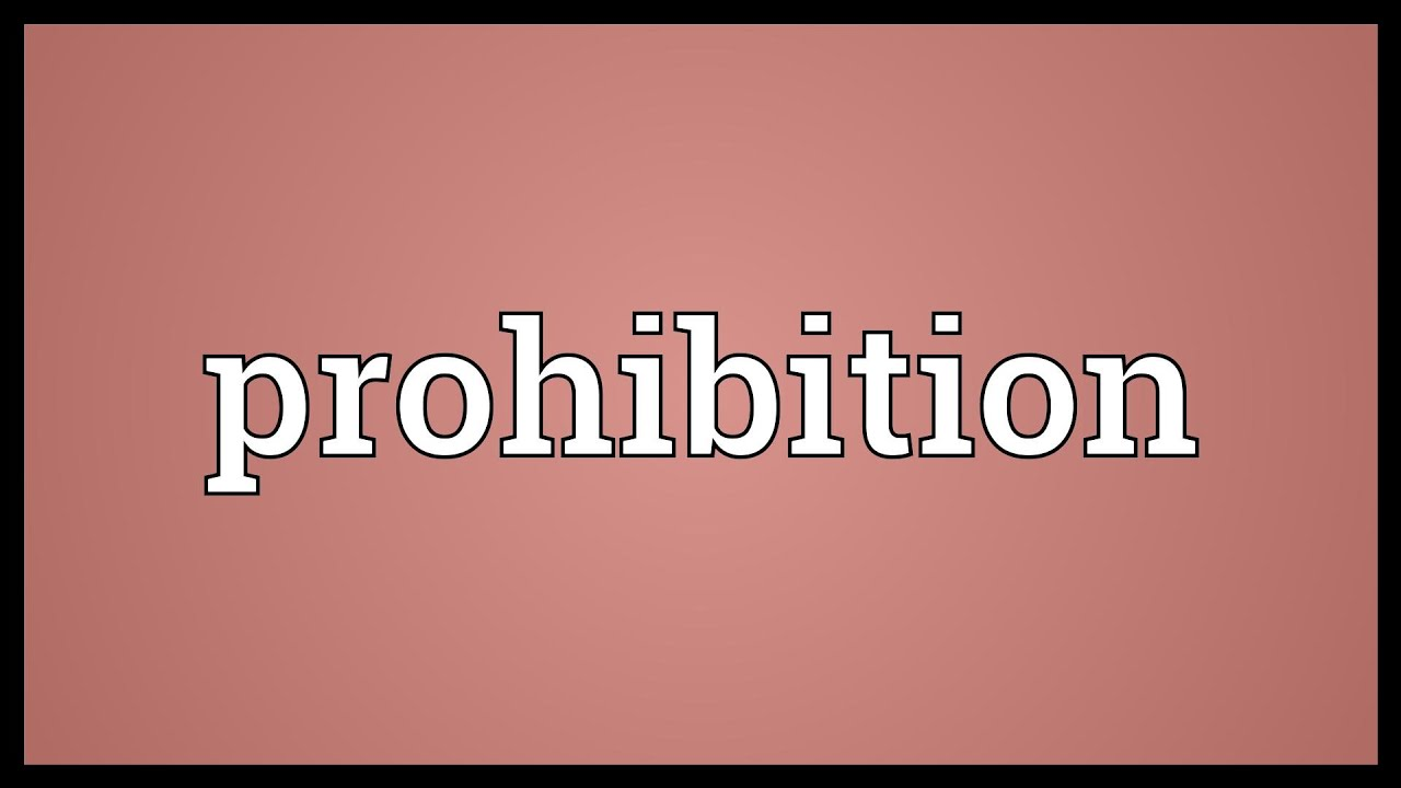 write a short essay on prohibition