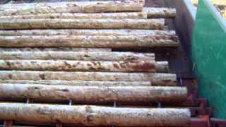Log Step Feeder