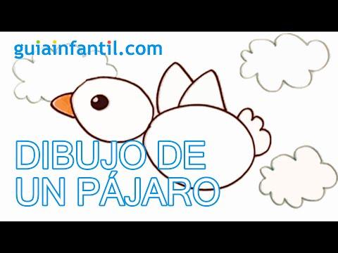 Cómo Dibujar Un Pájaro Paso A Paso Con Los Niños