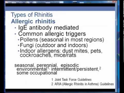 rhinitis--a-primer-for-specialists-(dykewicz)