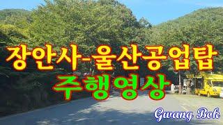 기장 장안사-울산공업탑 주행영상