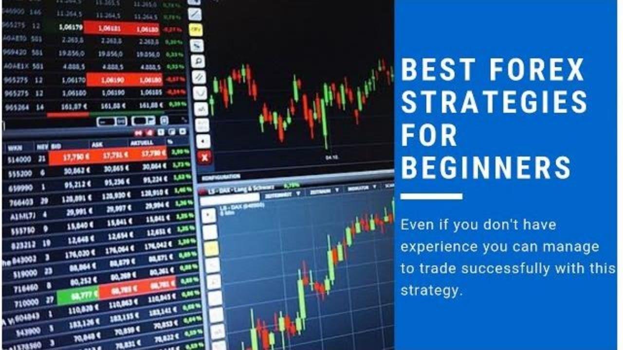 16 Best Forex Brokers in Jamaica - Forex Suggest