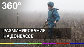 Саперы начали разминирование линии разграничения сил на Донбассе