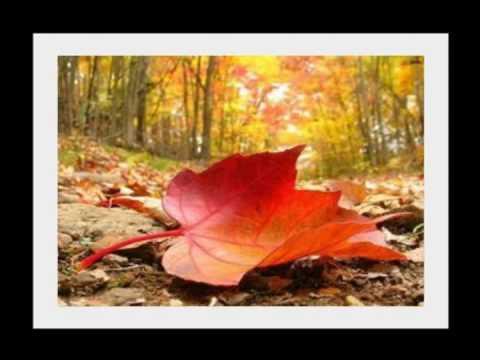 Wierszobraz W Kolorach Jesieni