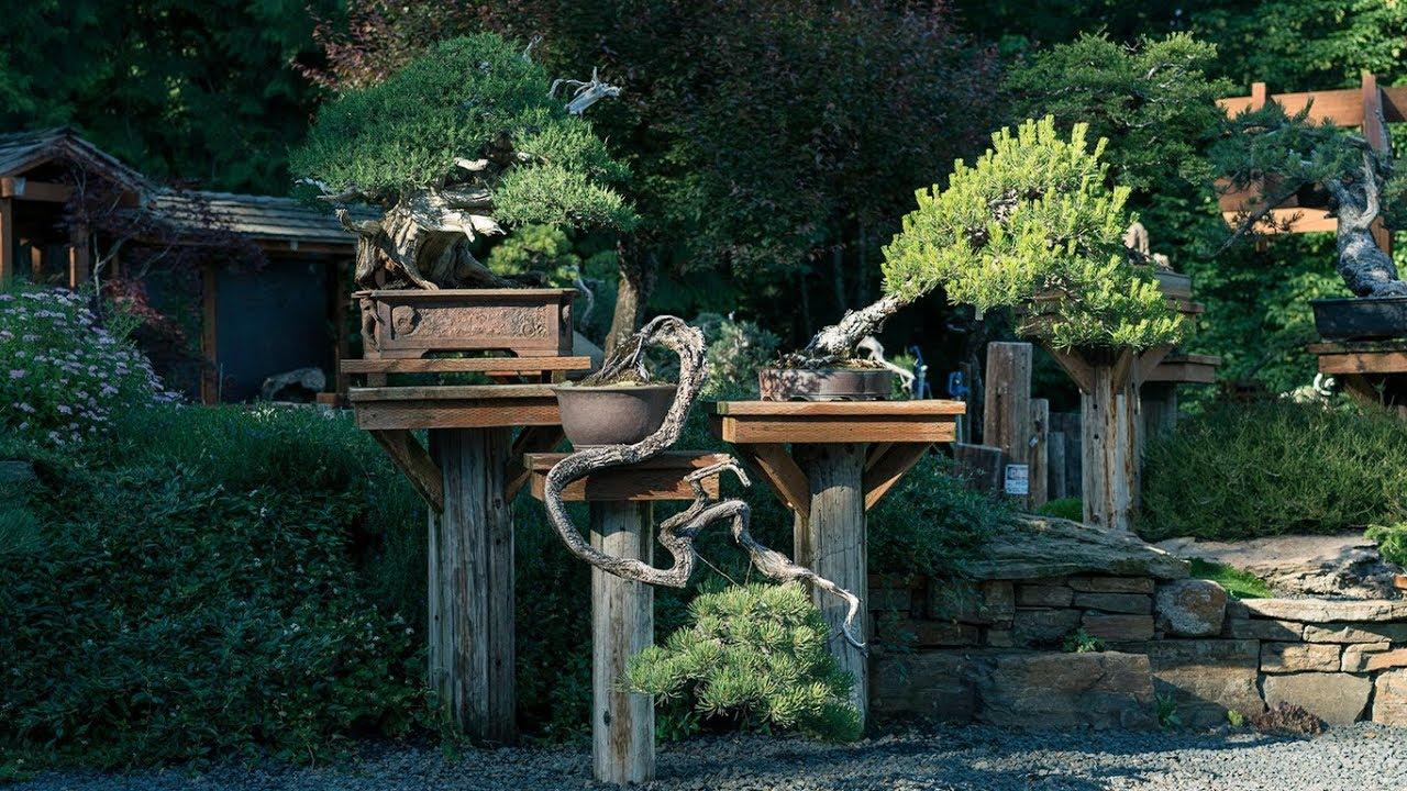 Garden Design - YouTube