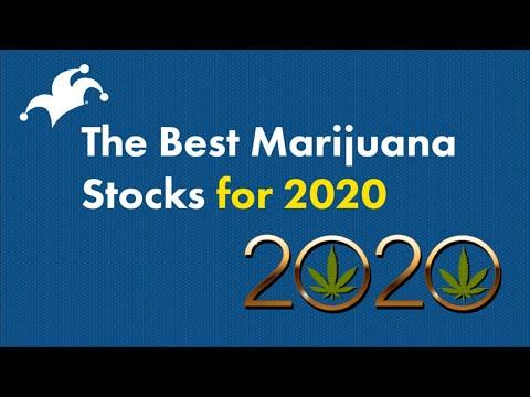Best Marijuana Stocks To Buy In 2020