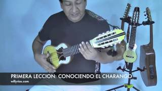 CURSOS DE  CHARANGO NIVEL BASICO. 1   ( Willy Rios)
