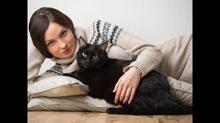 Чёрные Кошки Коты и Котята с Девушками | Чёрная Кошка в Слайд Шоу с Картинками и Фотографиями