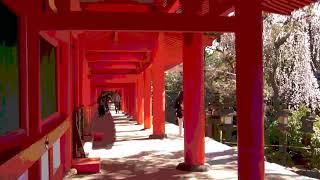 関西/Kansai 781年 桓武天皇即位.