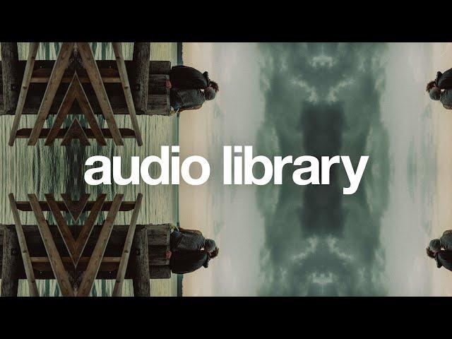 Give Love — Nettson [Vlog No Copyright Music]
