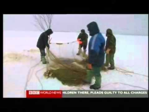 Climate Change Warrm Russia 1 of 2 - BBC Our World Environmental Documentary