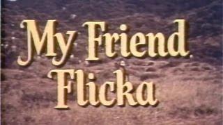 My Friend Flicka 02 of 39 - Blind Faith